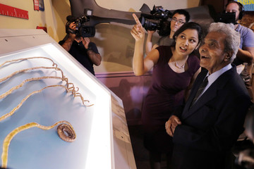 Shridhar Chillal of India stands with his grand daughter Shraddha Chillal at an announcement that the five fingernails he grew for 66 years will be displayed in Ripley's Believe it or Not in New York