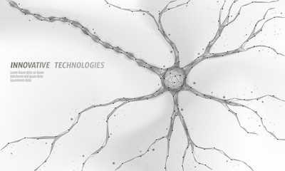 Human neuron low poly anatomy concept. Artificial neural network technology science medicine cloud computing. AI 3D abstract biology system. Polygonal white neutral background vector illustration