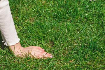 Fototapeta Dłoń młodej dziewczyny na trawie