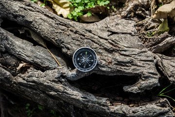 Compass on a log in a natural environment