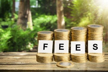 Fees inscription on stacks pf coins