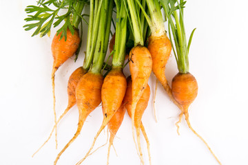 mini baby carrots over white background