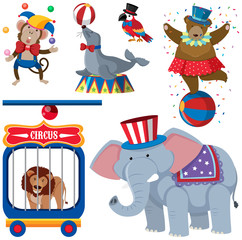 A Set of Circus Animals