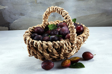 Plums on rustic stone background. Half of blue plum fruit. Many beautiful plums with leaves