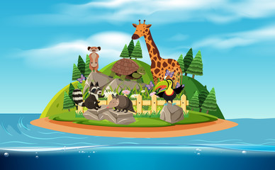 An Island and Exotic Animals
