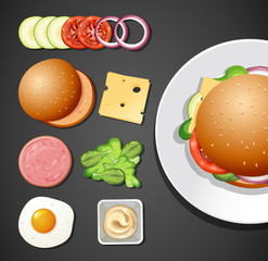 A Set of Burger Element