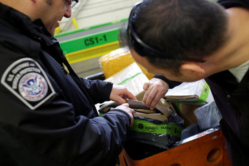 U.S. Customs and Border Protection officers inspect a package at the International Mail Facility at O'Hare International Airport in Chicago, Illinois