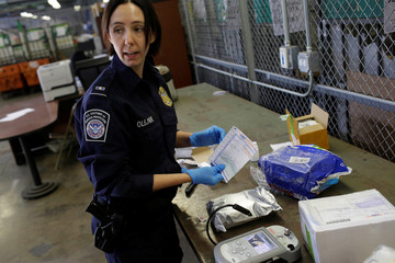 U.S. Customs and Border Protection officer Ella Olejnik looks at the paperwork on a package before inspecting the substancein Chicago