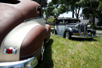 Old vintage cars are seen on a lawn in Windsor, California