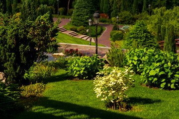Flowers and bushes on the slope in a landscape recreation park