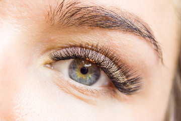 Beautiful Woman with long lashes in a beauty salon. Eyelash extension. - Beauty and fashion concept
