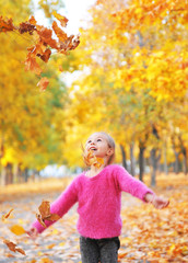 Cute little girl plays with an autumn leaves.