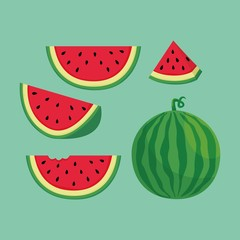 Slices of watermelon illustration vector