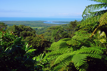 Landscape view of the Coral Sea and Daintree Rainforest at the Walu Wugirriga Mount Alexandra Lookout near Cape Tribulation, Queensland, Australia