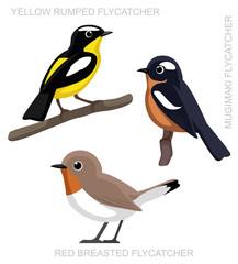 Bird Flycatcher Set Cartoon Vector Illustration