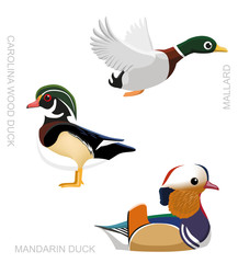 Bird Duck Set Cartoon Vector Illustration