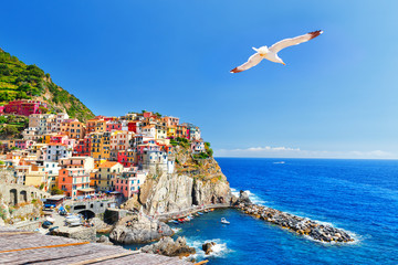 Manarola, Italy, National Park Cinque Terre, UNESCO world heritage list. Seagull soar over gorgeous panorama of coastal village Manarola. Idyllic picturesque scenery, vacation background. Landmark.