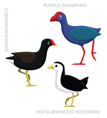 Bird Swamphen Set Cartoon Vector Illustration