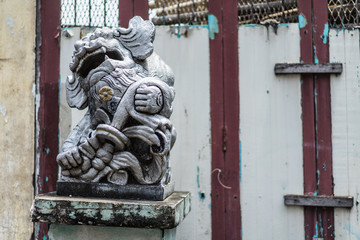 Old Chinese lion stucco  in front of wooden gate