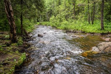 Mountain river stream landscape