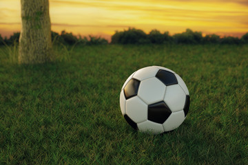 3d rendering of soccer ball on green grass in the evening sunset