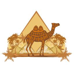 Camel in egypt desert - banner