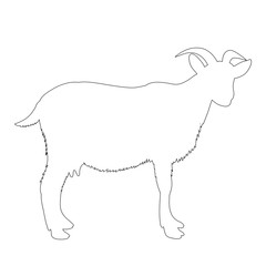 vector, isolated contour is a goat on a white background