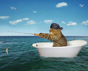 The cat in a bandana is fishing on the bathtub in the sea.