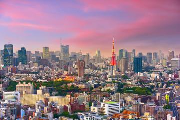 Tokyo, Japan Cityscape at Dusk