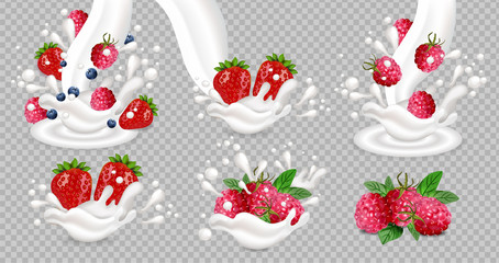 Milk or yogurt splash with berry fruits Vector realistic set collections isolated