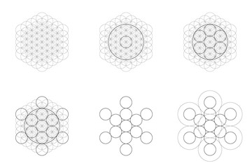 Set of geometrical elements and shapes. Sacred Geometry Flower of Life and Metatron Cube transition. Vector designs