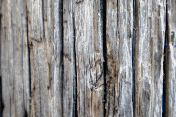 close up of old grey wood texture for design and decoration,background with natural patterns