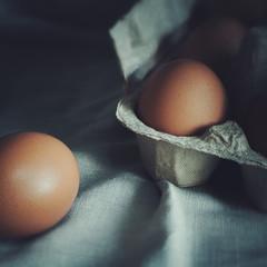 eggs on a towel