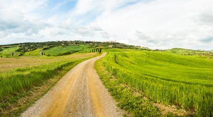 Typical Tuscan rural landscape scene. Road, fields, trees. Amazing fresh green colors. Travel, adventure, relax, piece.