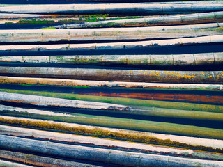Colorful weathered bamboo poles in water, top view