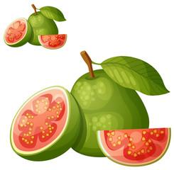 Guava fruit. Cartoon vector icon isolated