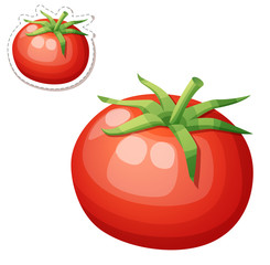 Whole tomato vegetable. Cartoon vector icon isolated on white background