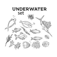 Ocean animals underwater sketch. Monochrome fish line art. Summer tropical food. Deep water illustration for restaurant, shop. wrap, cloth, advertising