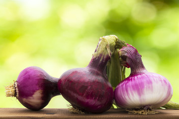 onions in natural background