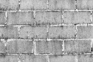 Cinder Block Wall Black and White
