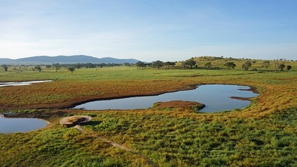 water whole with kenyan nature