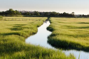 creek through marsh field
