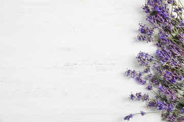 Beautiful blooming lavender flowers on light background, top view