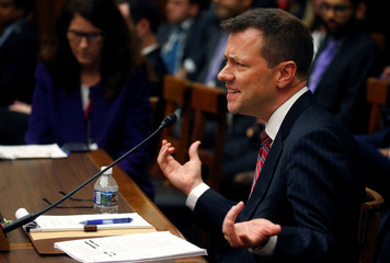 FBI Deputy Assistant Director Peter Strzok testifies before the House Committees on Judiciary and Oversight and Government Reform joint hearing in Washington