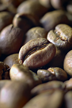 Light roasted coffee beans shot at an angle