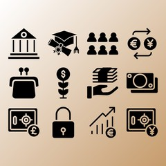 Growth, safebox and purse related premium icon set
