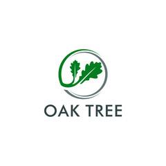 oak tree logo template vector illustration