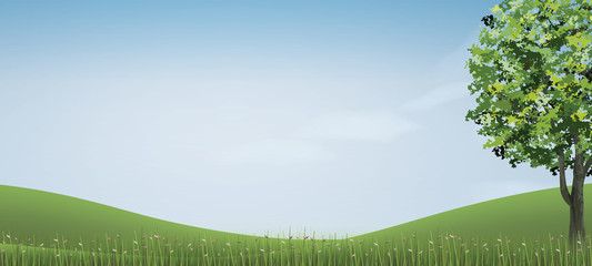 Tree in green grass hill area with blue sky. Abstract background park and outdoor for landscape idea. Use for natural article both on print and website. Vector.