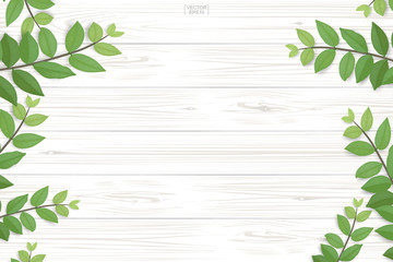 Wood plank pattern and texture with green leaves for natural  background. Abstract background for product presentation. Realistic vector.