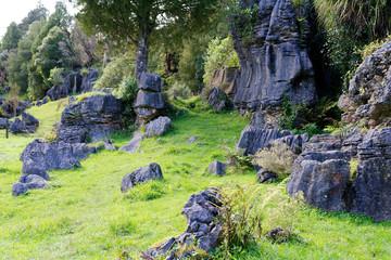 Basalt rocks in Waitomo, New Zealand